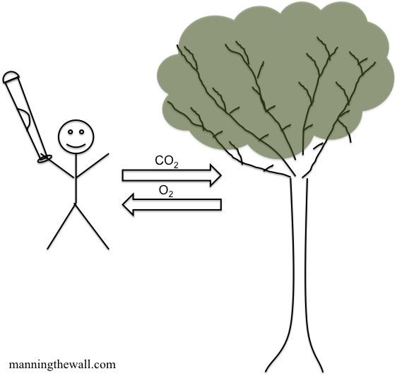 Equilibrium @manningthewall.com