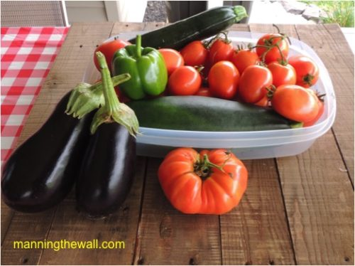 Morning Harvest From The Kitchen Garden 9-2-17 | manningthewall.com